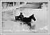 Water Advance Photo Co April 1916 03-089 Floods 1916 Archives of Manitoba